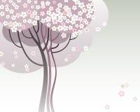 Árboles en la floración Foto de archivo libre de regalías