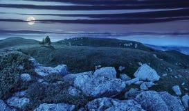 Árboles en la ladera entre los cantos rodados enormes en la noche Fotos de archivo libres de regalías