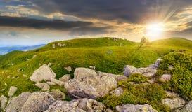 Árboles en la ladera entre los cantos rodados enormes en la puesta del sol Imagen de archivo libre de regalías