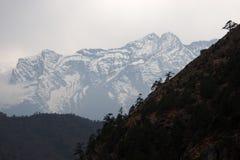Árboles en la montaña de la cuesta escarpada y de la nieve, Himalaya Foto de archivo