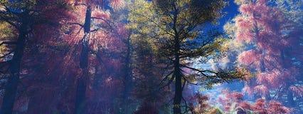 Árboles en la niebla Bosque del otoño en la niebla Fotografía de archivo