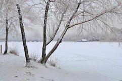 Árboles en la nieve, un río congelado cubierto con nieve Imagenes de archivo