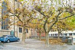 Árboles en la pared de la iglesia Imagen de archivo libre de regalías