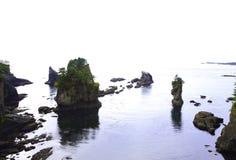 Árboles en la roca Imagen de archivo libre de regalías