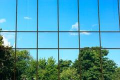 Árboles en la ventana Fotos de archivo