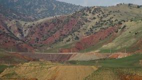Árboles en las colinas herbosas y de la suciedad almacen de metraje de vídeo