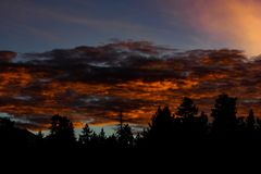 Árboles en las nubes ardientes foto de archivo libre de regalías