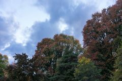 Árboles en otoño con verde amarillo rojo de las hojas coloridas con temporada de otoño del cielo y de las nubes Imagenes de archivo