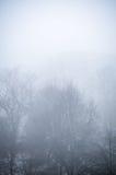 Árboles en paisaje de niebla del paisaje del invierno Fotos de archivo libres de regalías