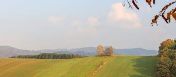 Árboles en paisaje del prado en panorama temprano del otoño imágenes de archivo libres de regalías