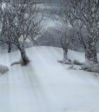 Árboles en paisaje hivernal Foto de archivo libre de regalías