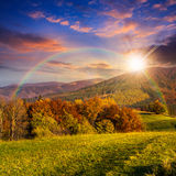 Árboles en prado del otoño en montañas en la puesta del sol Foto de archivo libre de regalías