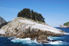 Árboles en roca de la isla Fotos de archivo