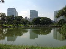 Árboles en un parque verde en Tokio Fotos de archivo