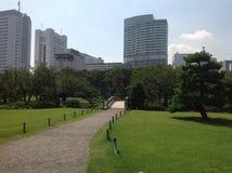 Árboles en un parque verde en Tokio Imagen de archivo libre de regalías