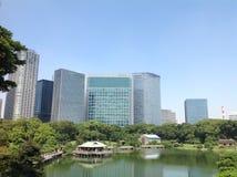 Árboles en un parque verde en Tokio Fotos de archivo libres de regalías