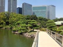 Árboles en un parque verde en Tokio Imagen de archivo
