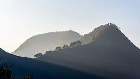 Árboles en una cresta Imagen de archivo libre de regalías