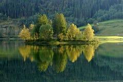 Árboles en una isla en la reflexión del lago noruega Imágenes de archivo libres de regalías