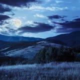 Árboles en valle de la montaña en la noche Imágenes de archivo libres de regalías