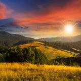Árboles en valle de la montaña en la puesta del sol Imagen de archivo libre de regalías
