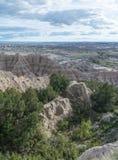 Árboles en valle de la piedra arenisca Fotos de archivo