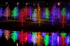 Árboles envueltos en las luces LED para la Navidad Imagen de archivo