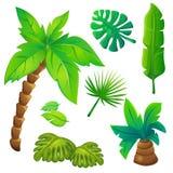 Árboles estilizados de la selva fijados stock de ilustración