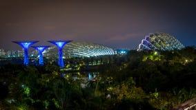Árboles estupendos en Singapur foto de archivo