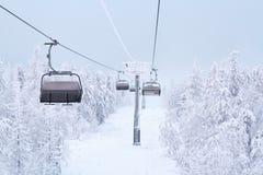 Árboles fabulosos en la nieve antes de la Navidad Mañana escarchada en la Feliz Año Nuevo del bosque Salida del sol hermosa Imagenes de archivo