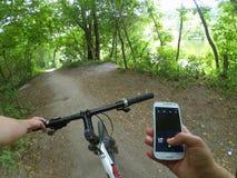 Árboles forestales de la trayectoria del volante de la bicicleta Imágenes de archivo libres de regalías