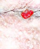 Árboles forestales del invierno en la nieve Corazón Fotografía de archivo libre de regalías