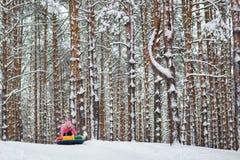 Árboles forestales hermosos del pino del invierno en nieve el niño va de la montaña en un tubo foto de archivo