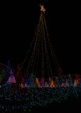 Árboles grandes de las luces de la Navidad Imagen de archivo libre de regalías