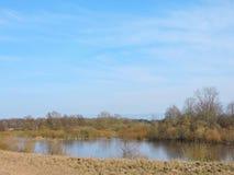 Árboles hermosos en el lado de Nemunas del río Fotos de archivo libres de regalías