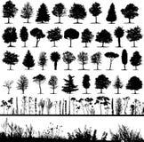 Árboles, hierba, vector de la planta