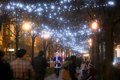Árboles iluminados en Zrinjevac Imagenes de archivo