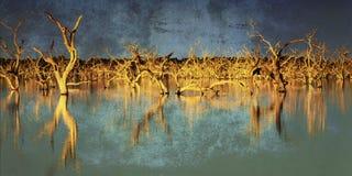 Árboles inundados con los efectos de Grunge Foto de archivo
