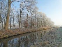 Árboles a lo largo del agua en invierno foto de archivo libre de regalías