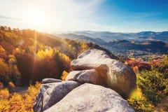 Árboles majestuosos con los haces soleados en el valle de la montaña Pla de la ubicación Fotos de archivo