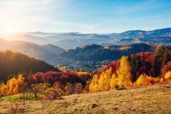 Árboles majestuosos con los haces soleados en el valle de la montaña Pla de la ubicación Fotografía de archivo