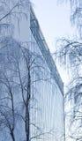 Árboles medios modernos del edificio de oficinas Imagenes de archivo