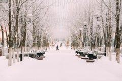 Árboles nevados en la calle de la ciudad Invierno Nevado Fotografía de archivo