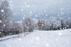 Árboles nevados y el nevar pesado en las montañas Imagenes de archivo