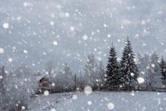 Árboles nevados y el nevar pesado en las montañas Fotos de archivo libres de regalías