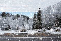 Árboles nevados y el nevar pesado en las montañas Fotografía de archivo libre de regalías