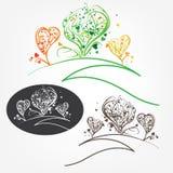 Árboles ornamentales del amor con las hojas Fotografía de archivo libre de regalías