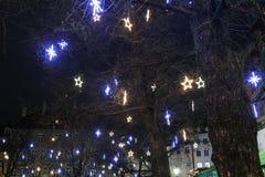 Árboles ornated iluminados en las calles de Munich Foto de archivo libre de regalías