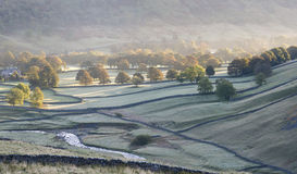 Árboles otoñales en el valle Fotos de archivo libres de regalías