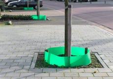 Árboles públicos Imagen de archivo libre de regalías